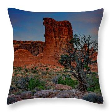 Sheep Rock Throw Pillow