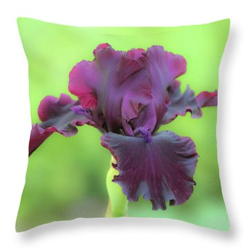 Throw Pillow featuring the photograph Sheer Elegance by Deborah  Crew-Johnson