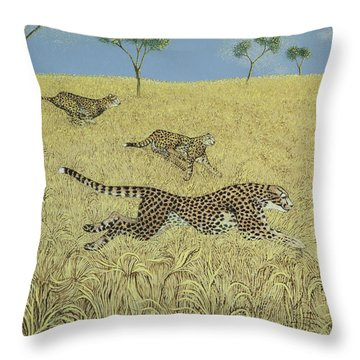 Sheer Speed Throw Pillow by Pat Scott