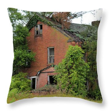 Sheffield House Panorama Throw Pillow
