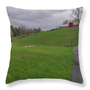 Shelburne Country Road Throw Pillow by Tom Singleton