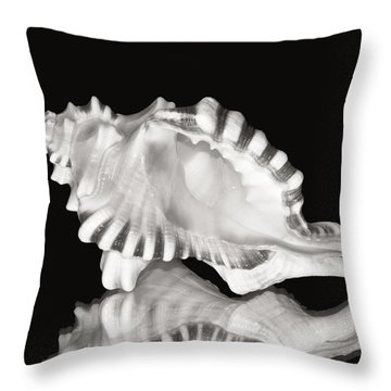 Shell And Reflection Throw Pillow by Bill Brennan - Printscapes