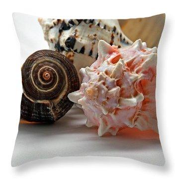 Throw Pillow featuring the photograph Shell Grouping by Lynda Lehmann