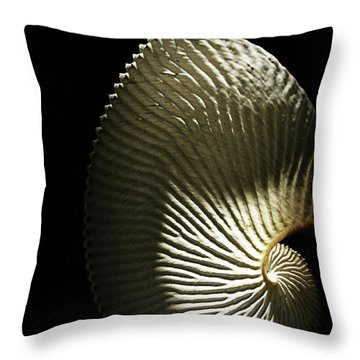 Seashell Fan On Black  Throw Pillow