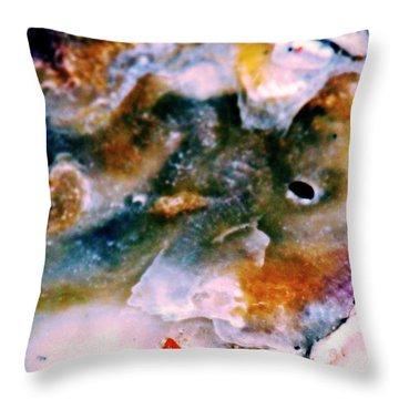 Shell Treasure Story Throw Pillow