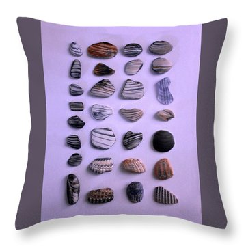 Sea Shell Treasures #1 Throw Pillow