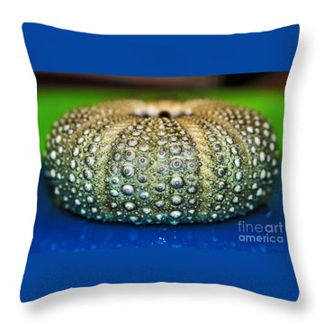 Shell With Pimples Throw Pillow by Kaye Menner