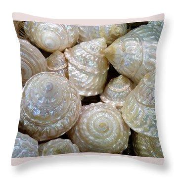 Shells - 4 Throw Pillow