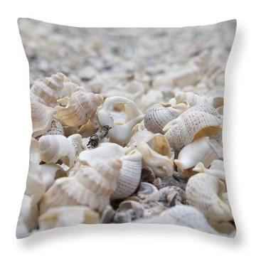 Shells 1 Throw Pillow