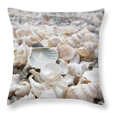 Shells 2 Throw Pillow