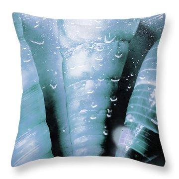 Shells And Ocean Spray Throw Pillow