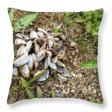 Throw Pillow featuring the photograph Shells Of Freshwater Mussels by Michal Boubin