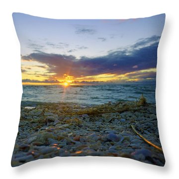 Shells On The Beach At Sunset Throw Pillow