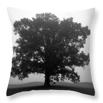 Shelter Throw Pillow by Amanda Barcon