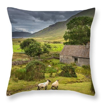 Shelter For Centuries Throw Pillow by Tim Bryan