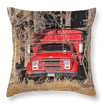 Shelter From The Weather Throw Pillow
