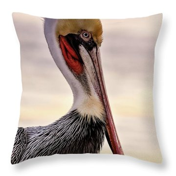 Shelter Island's Pelican Throw Pillow