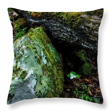 Sheltered By The Rock Throw Pillow