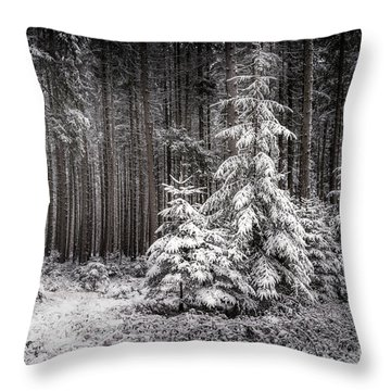 Throw Pillow featuring the photograph Sheltered Childhood by Hannes Cmarits