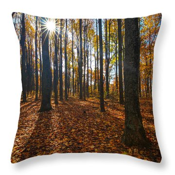 Shenandoah Forest Throw Pillow