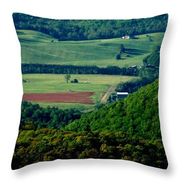 Shenandoah Valley 2 Throw Pillow