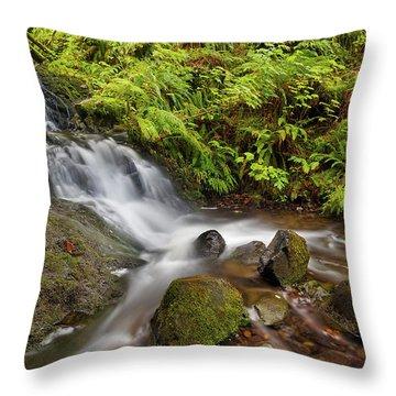 Shepperd's Dell Falls Throw Pillow by David Gn