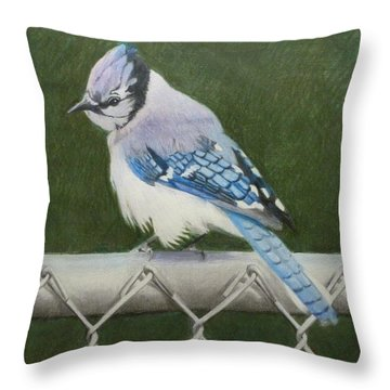 Sherrie's Bluejay Throw Pillow