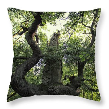 Sherwood Forest Throw Pillow by Martin Newman