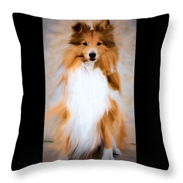 Shetland Sheepdog - Sheltie Throw Pillow