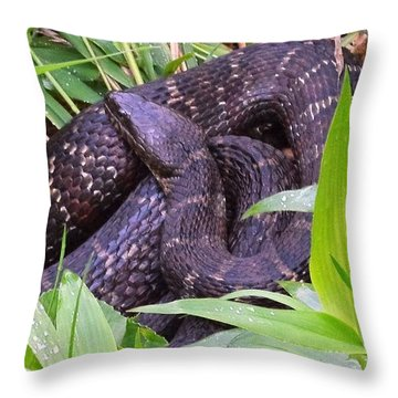 Shhhh1 Throw Pillow