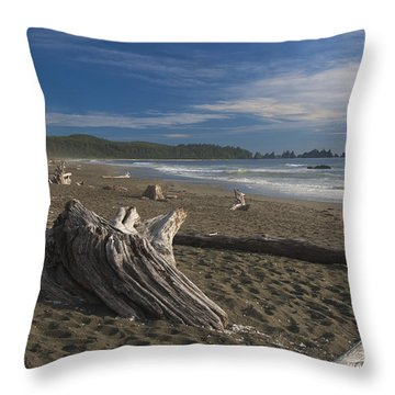 Shi Shi Beach Driftwood Afternoon Throw Pillow