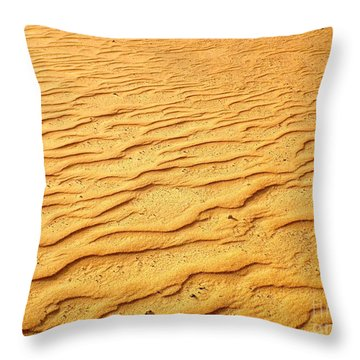 Shifting Sands Throw Pillow