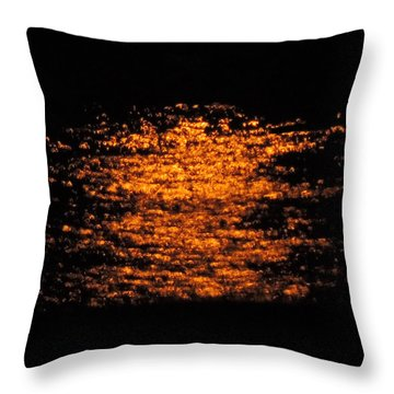 Shimmer Throw Pillow by Linda Hollis