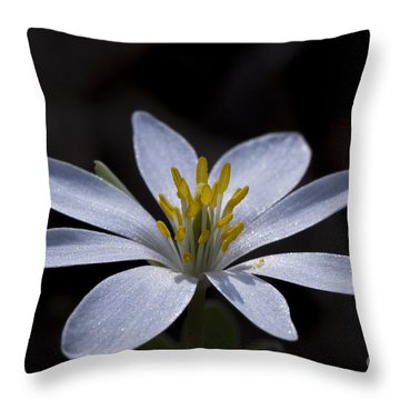 Shimmering Petals Throw Pillow