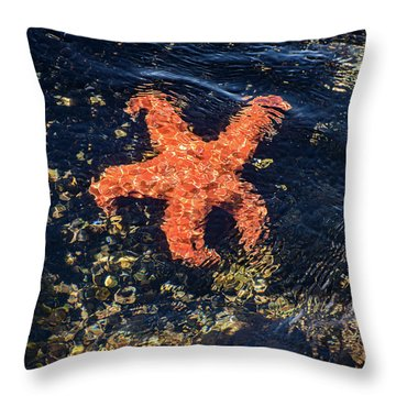 Throw Pillow featuring the photograph Shimmering Starfish by Susan Wiedmann