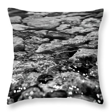 Shimmering Waters In Spring Throw Pillow