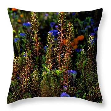Shimmers Throw Pillow
