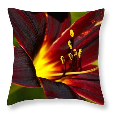 Throw Pillow featuring the photograph Shine From Within by Ben Upham III