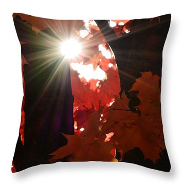 Shine On Throw Pillow