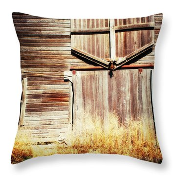 Throw Pillow featuring the photograph Shine The Light On Me by Julie Hamilton