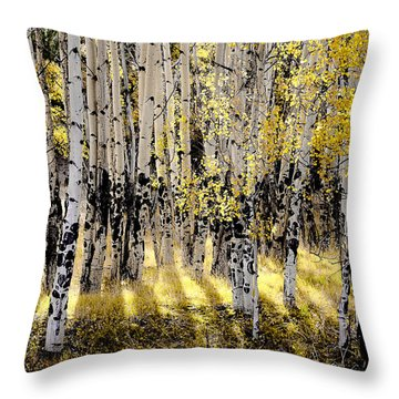 Shining Aspen Forest Throw Pillow by The Forests Edge Photography - Diane Sandoval