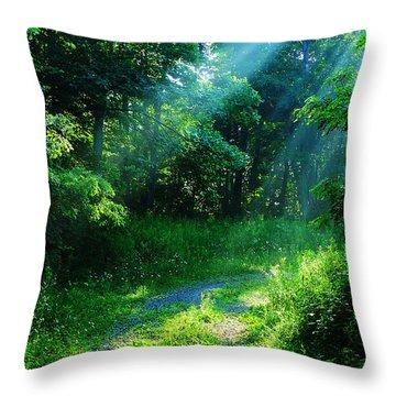 Shining Light Throw Pillow by Thomas R Fletcher