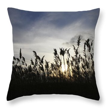 Throw Pillow featuring the photograph Shining Through by Heather Kenward