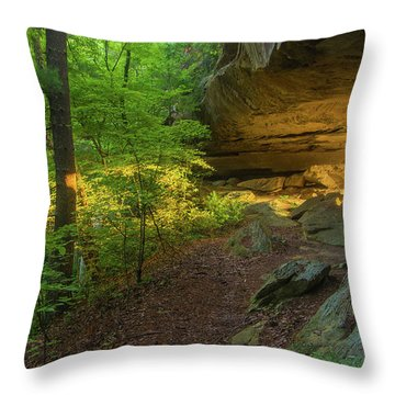 Shining Through.... Throw Pillow by Ulrich Burkhalter