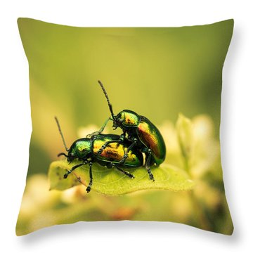 Shiny Pair Throw Pillow by Shane Holsclaw