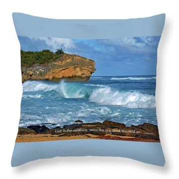 Shipwreck Beach Shorebreaks 2 Throw Pillow