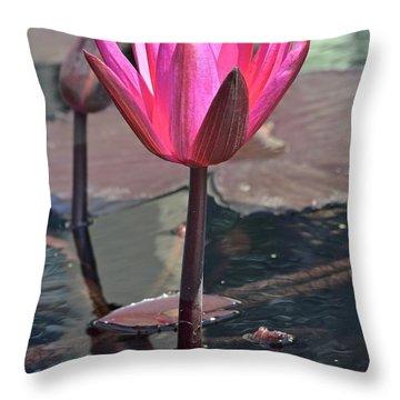 Shocking Pink Waterlily Throw Pillow