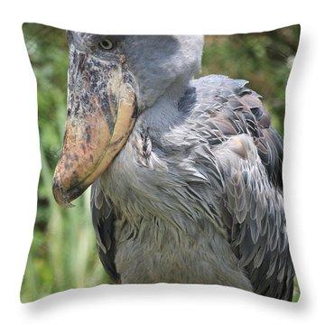 Shoebill Stork Throw Pillow by Carol Groenen