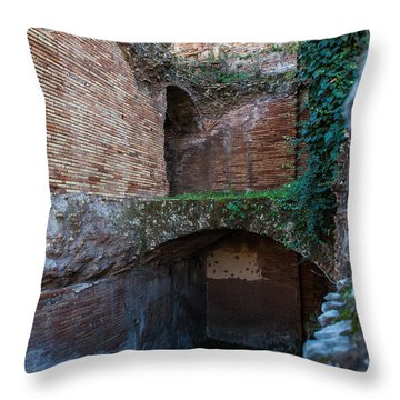 Shops Of Palatine Throw Pillow
