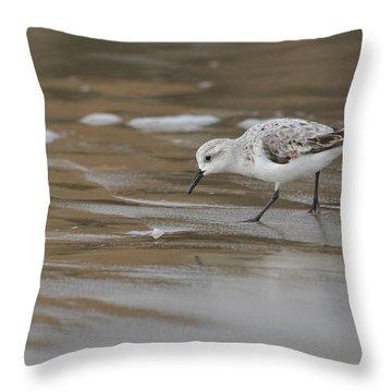 Shore Pickings Throw Pillow by Fraida Gutovich